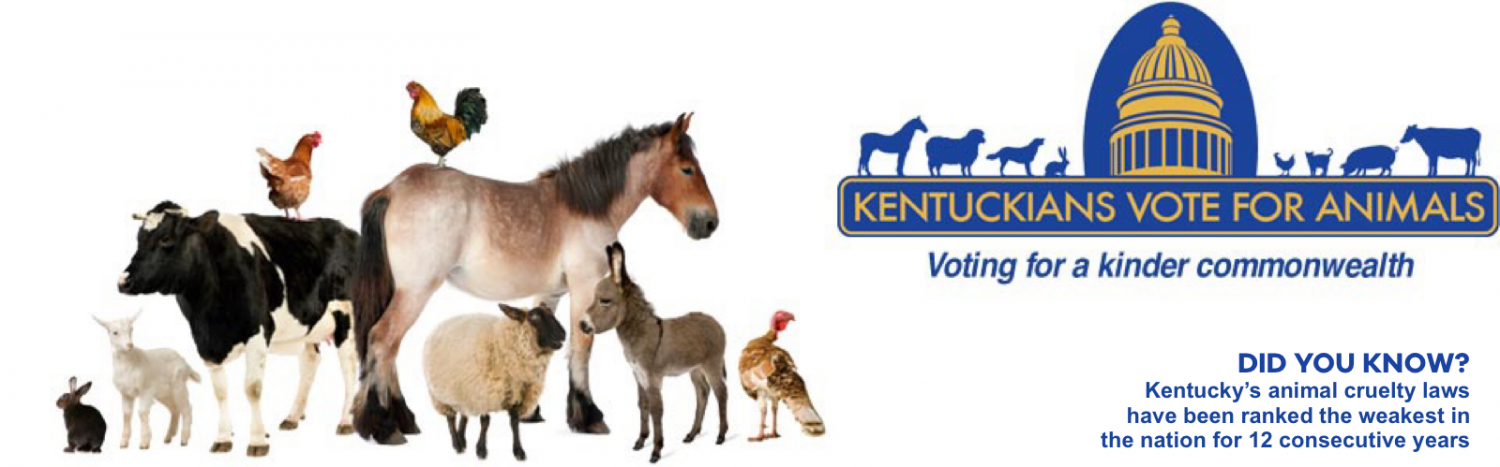 Kentuckians Vote for Animals